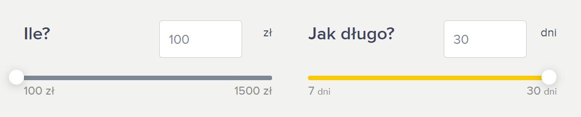 Fot. Screen / Netcredit.pl (na dzień 21.07.2021)