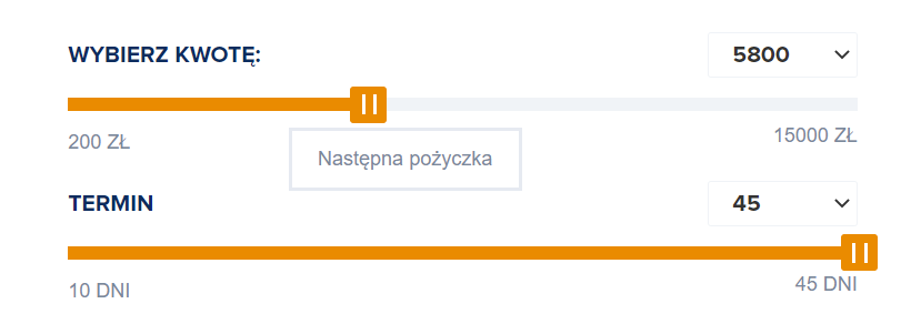 Fot. Screen / pozyczkaplus.pl